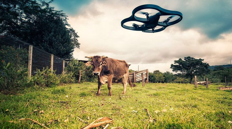 Best Travel Drones for 2022